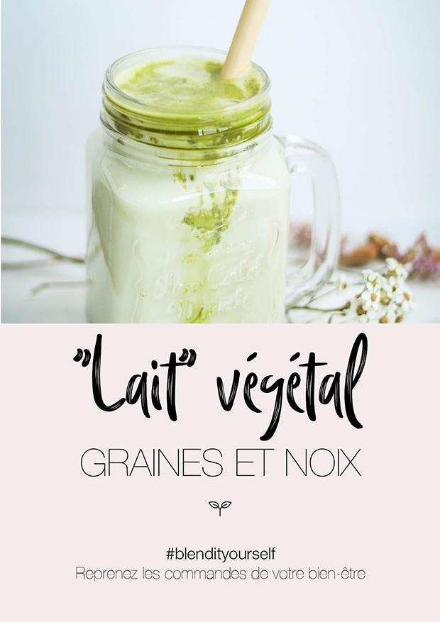 Guide #3 - ``Lait`` Végétal graines et noix